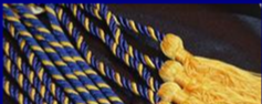 Alpha Pi Sigma  blue and gold cord with gold tassels