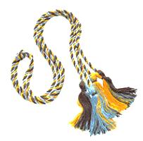 gamma theta upsilon brown light blue and gold cord