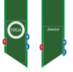 NSU Student Government Association An emerald green stole with a kelly green border, SGA logo and position held by grad