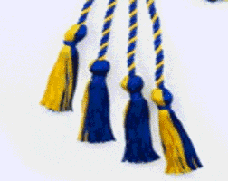 Phi Alpha blue and gold cord