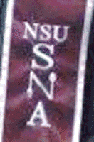 Student Nutrition Association A burgundy stole with silver border and lettering