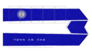 NSU-BA Pre-Professional Health Club Blue stole, white binding, white print with PPHC logo