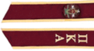 Pi Kappa Alpha Garnet stole with gold piping. Greek letters and coat of arms