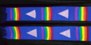Stonewall Equality Alliance Lavender stole with rainbow stripes and pink triangles