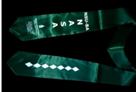 NSU-BA NASA Green stole with NASA lettering, clocktower logo, and 7 diamonds